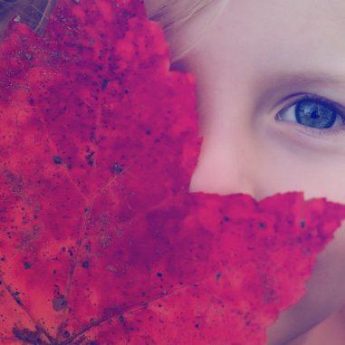 artopticos, cabecera. niña ojos, optica